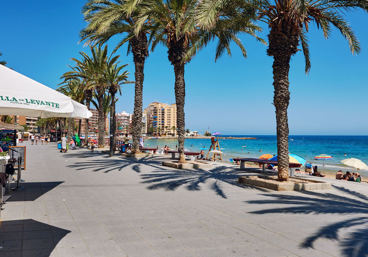 Torrevieja, Spain - July 10, 2017: Promenade near the Playa del Cura in Torrevieja city at summertime. Costa Blanca. Spain Coastline Costa Blanca Holiday Mediterranean Sea Promenade SPAIN Seashore Summertime Torrevieja Vacations Beach Coast Landscape Outdoors Palm Trees People Sea Sky Street Summer Sunny Day Travel Destinations Tropical Climate Walkway Waterfront