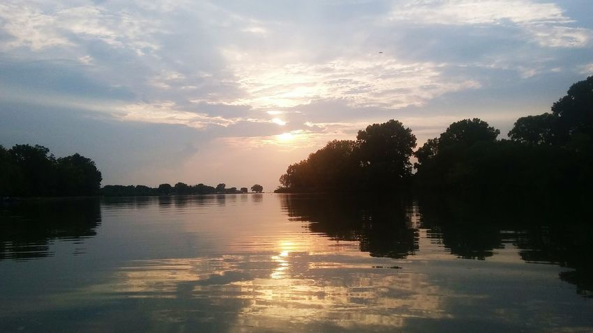 Ontario Thames River Southern Ontario River Relax Fishing Boat Tree Water Sunset Lake Forest Silhouette Reflection Sunlight Sky Landscape Reflection Lake Atmospheric Mood