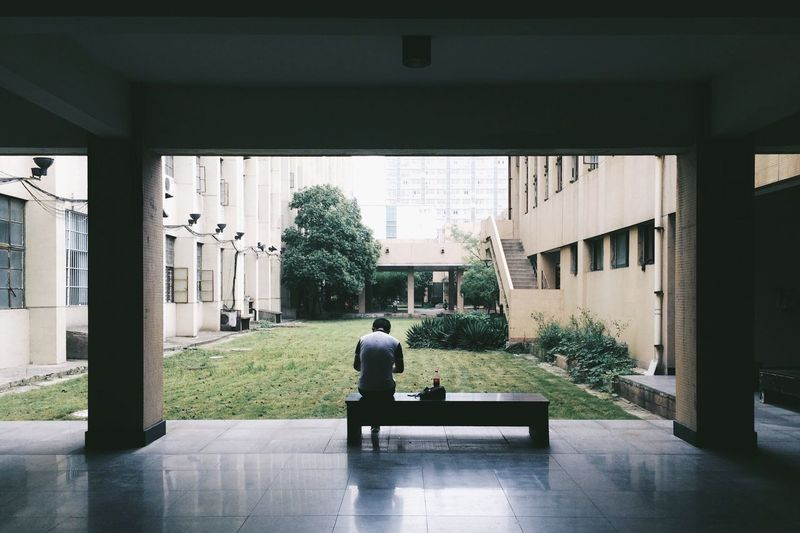 Rear view of man sitting on a bench
