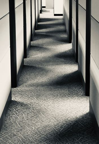 Unexpected Beauty in the office. Light and shadows Cubicles Office Light And Shadow Direction The Way Forward Built Structure No People A New Perspective On Life Shadow Diminishing Perspective Corridor Indoors  Empty In A Row Sunlight Absence