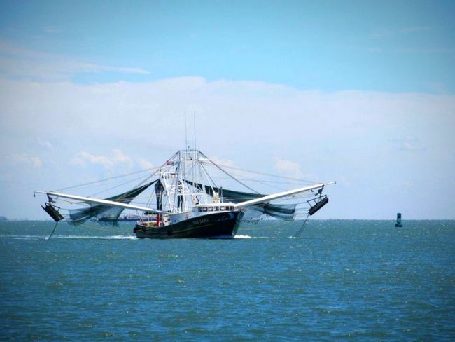 Shrimp Boat Boats Gulf Of Mexico GalvestonTexas Galveston Water_collection Water