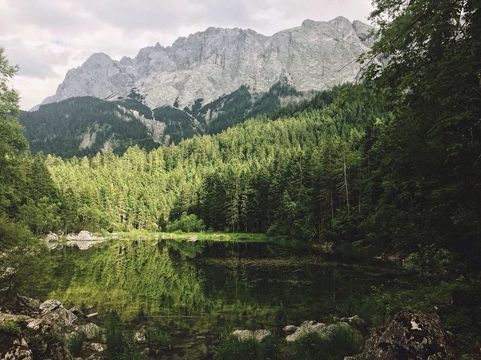 🏔//. Mountain Zugspitze Lake Lake View Reflection Forest Nature Alps Nature_collection Nature Photography Green Summer Mountain Range Landscape Outdoors Outdoor Photography Hiking Adventure Showcase July Tree Water Reflections View Countryside Tranquility Tranquil Scene Neighborhood Map The Great Outdoors - 2017 EyeEm Awards