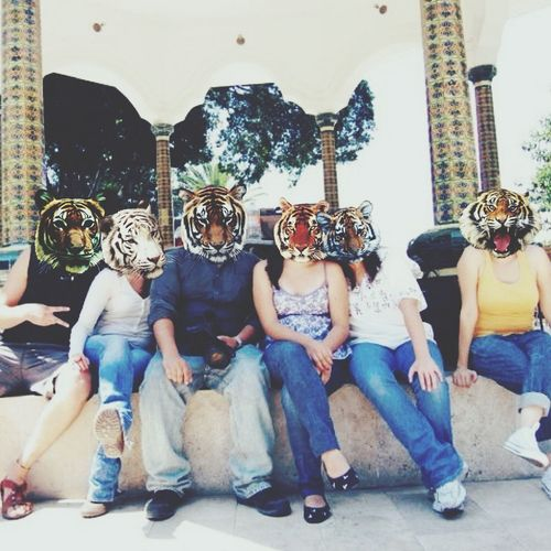 We're just a bunch of tigers Visitmexico at Acatlán, Puebla. Trip Funny Faces Animal Face