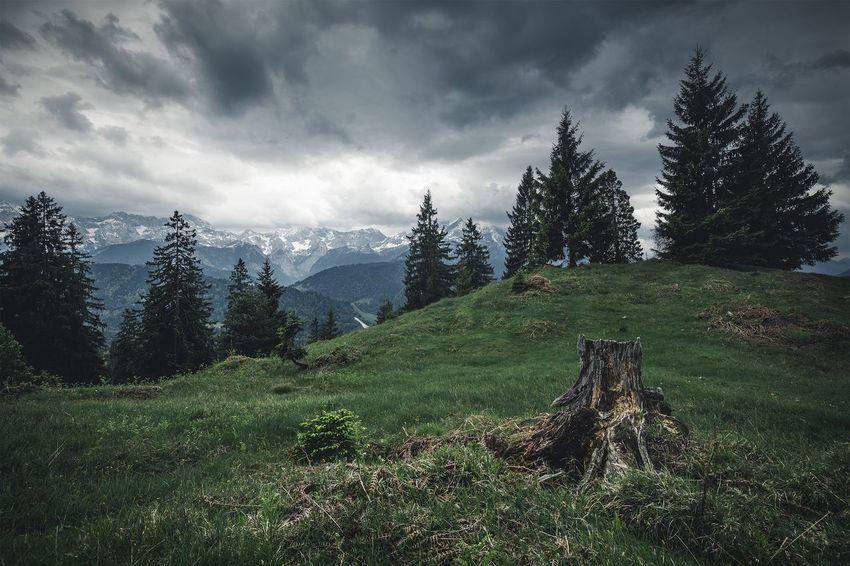 Nature Sky Weroamgermany Mountain Beauty In Nature Landscape Naturelovers Moody Germany Garmisch Farchant Nature Photography Travel Phorexbyjaworskyj Wanderlust Bavaria Clouds Itchyfeet Wank  Alps Mood Captures Forest Alpspitze Bavarian Alps