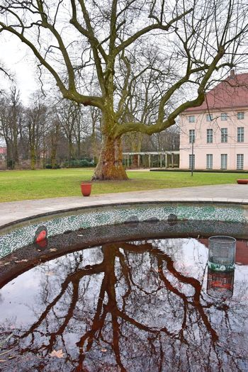 Architecture Bare Tree Building Exterior Built Structure Day Nature No People Outdoors Park Reflection Schlosspark Schönhausen Sky Tree Water Water Reflections Water_collection Well