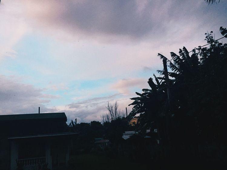 Purple Sky Nature Outdoors Sky Tree Cloud - Sky No People Nature Peace