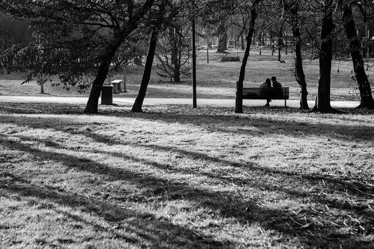 Milan,Italy Italy Streetphotography Park Black And White Love Lovelife Photobyivy Moments Parco Sempione