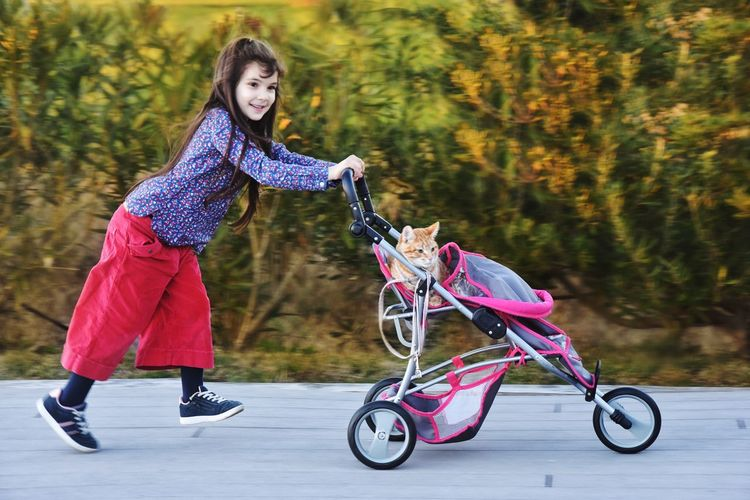 Pretend Play Buggy Push Chair Cat Pets Positive Emotion Full Length Childhood Child One Person Women Females Girls Bicycle