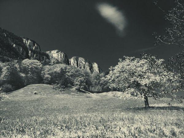 Monochrome Photography Alto Adige Landscape Monochrome Nature Photography Panoramic Photography Monochromatic Panorama Mountain Range