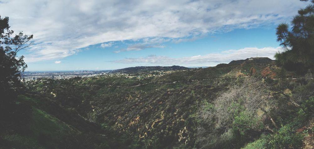 California Hollywood Sign