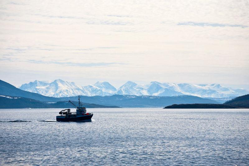 Fishing boat in a norwegian fjord