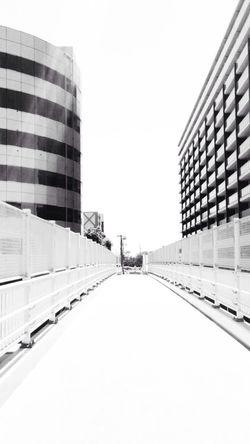 Japan Steel TowerLC Arch Walking 明るさぶっ飛ばして、かっちかちのコントラスト〜〜〜〜(^ν^)HIGH CONTRAST(。◕‿◕。)