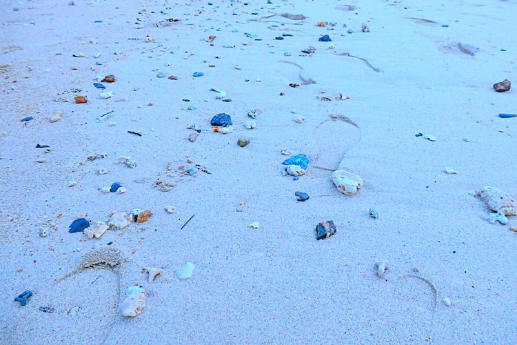 Beach Sand Summertime Eye4photography  EyeEm Nature Lover Seaside Sea_collection Okinawa EyeEm