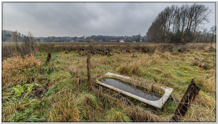 Pecrot, Belgium Tub Abandoned Bathtub Field Landscape Nature Outdoors