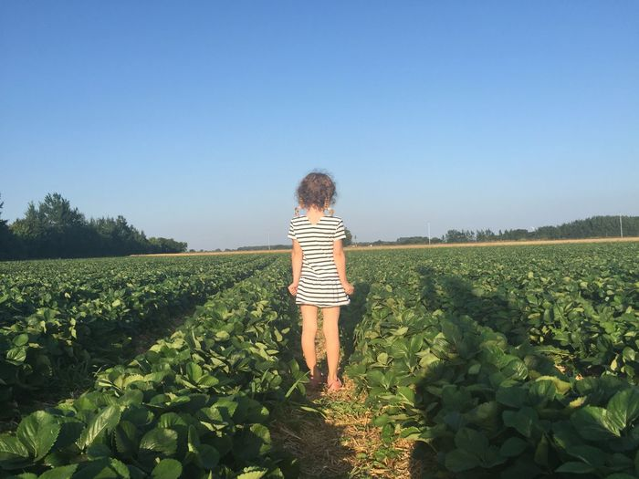Girl In Agricultural Field