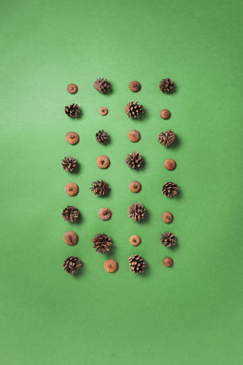 High angle view of berries over white background