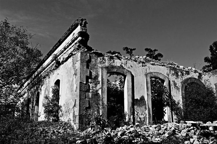 Murete en la ex fabrica de telas de Nogales, Veracruz Arch Architecture Blackandwhite Building Exterior Built Structure Eyemarchitecture Eyemblackandwhite History Low Angle View No People Old Ruin Outdoors Tree