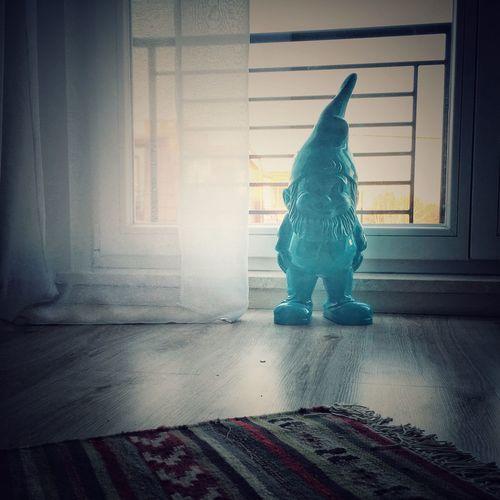 Bluebuddy Photographic Memory Gardengnome Gnome IPS2016Blue
