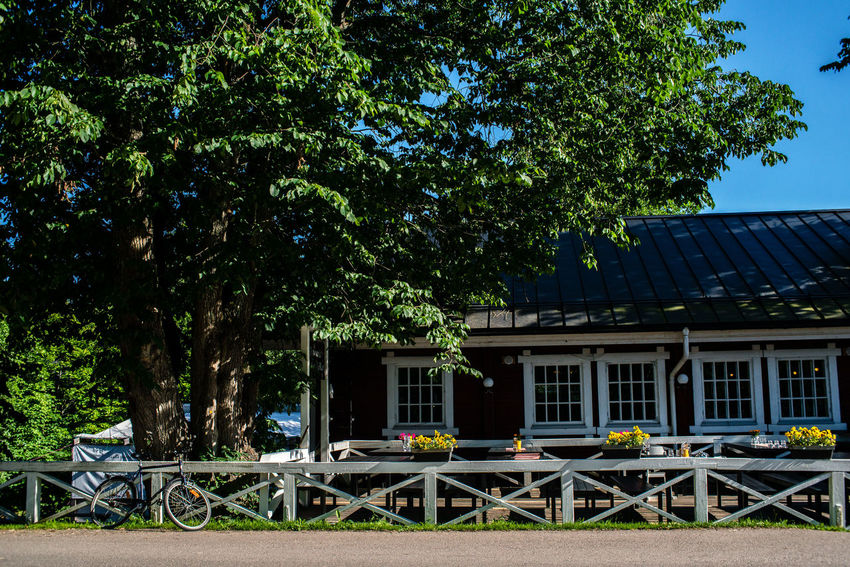 Strömforsin Ruukki Country Road Rural Architecture Building Exterior Built Structure Bycicle Chair Country Life Day House No People Outdoors Sky Street Streetcafe Summer Table Tree