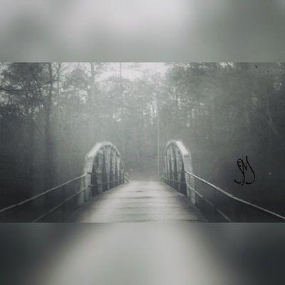 Love Love old bridges! Instadaily Picoftheday PhotographyRocks Photoofthday Thefog Bridges LetsGetLost Exploregeorgia Naturehippies Splendid_shotz Igsuper_shotz Ig_countryside Rsa_mystery Rsa_bnw Blackandwhite Bnwmood Snap_bnw Instashot Nocrop