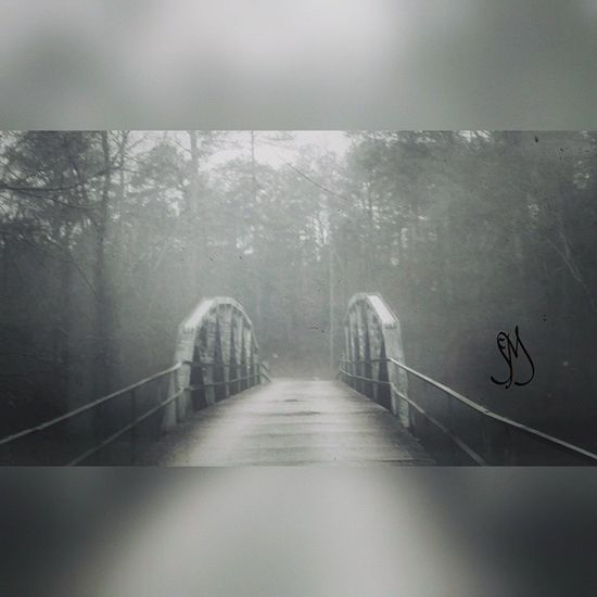 Love Love old bridges! Instadaily Picoftheday PhotographyRocks Photoofthday Thefog Bridges LetsGetLost Exploregeorgia Naturehippies Splendid_shotz Igsuper_shotz Ig_countryside Rsa_mystery Rsa_bnw Blackandwhite Bnwmood Snap_bnw Instashot Nocrop