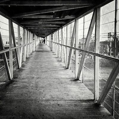 Puente peatonal Igersguadalajara FraccRevolucion Puente Blackandwhite Mobilephotography Urbanphotography Streetphotography