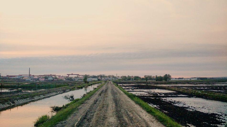 Dusk Harbin China Road River Sunset Water Country Framland Sky Green 中国 哈尔滨 黄昏 路 河流 日落 水 乡村 农田 天空 绿 중국 할빈 황혼