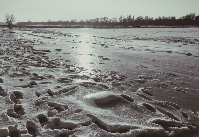 Danube in winter Nature Tranquility Tranquil Scene Outdoors Cold Temperature Winter Ice Snow