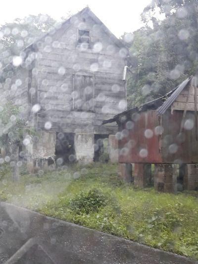 EyeEmNewHere Nature Outdoors Window RainyDay Raindrops Nature