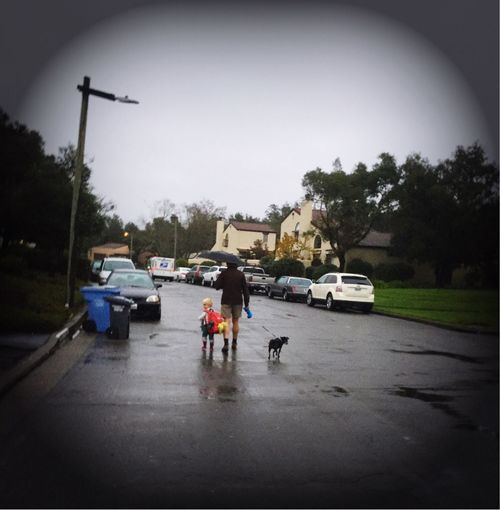 Road Day Real People Outdoors Sky Three Amigos Three Little Black Dog The Way Forward Diminishing Perspective Rain Weather Kids Family Walking Umbrella Going Away Blond Hair Elementary Age Father Athletic in Santa Rosa CA Brush Creek Villas