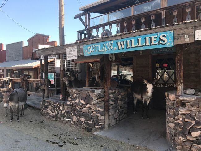 Text Built Structure Architecture Day Domestic Animals Building Exterior Outdoors Communication Mammal Animal Themes No People Sky Route 66 Burros Donkey