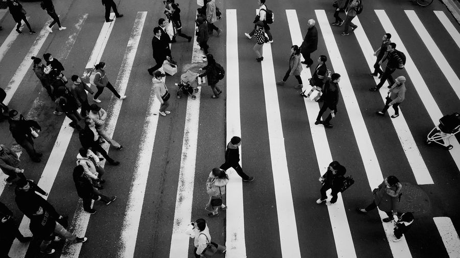 EyeEm Selects Large Group Of People Zebra Crossing Road Marking High Angle View Crossing Street City Street People Walking City Day City Life