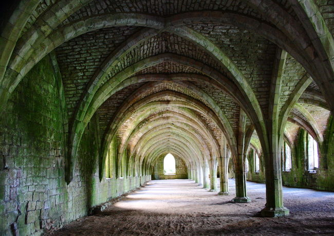 Cloisters Abbey Abbey Brickwork Abbey Cloisters Abbey Ruins Arch Arch Way Arches Cloisters  Convergence Converging Diminishing Diminishing Perspective Diminishing Point Lichen Light And Shade Moss Mould Moulding Wall Mouldy Mouldy Walls Pillars Shade Shadows Vanishing Point Vanishing Point..