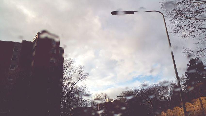 Rainy Days☔ in Frankfurt am Main Showcase: February