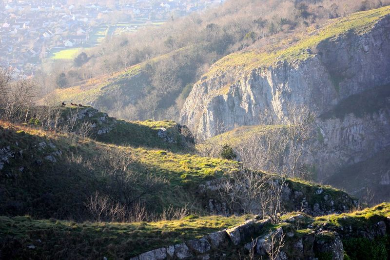 cheddar gorge Beauty In Nature Day Grass Landscape Mountain Nature No People Outdoors Scenics Sunlight Tranquility Tree