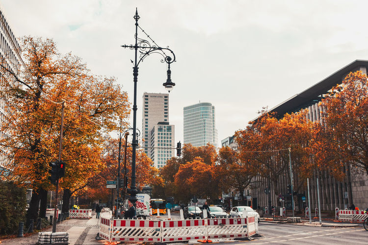 Cars on road by buildings against sky during autumn