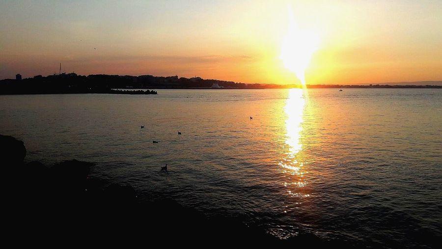 Sunset Beach Sea Summer Sunlight Beauty In Nature