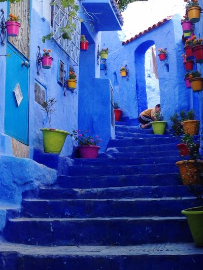 Chefchaouen blue and white.