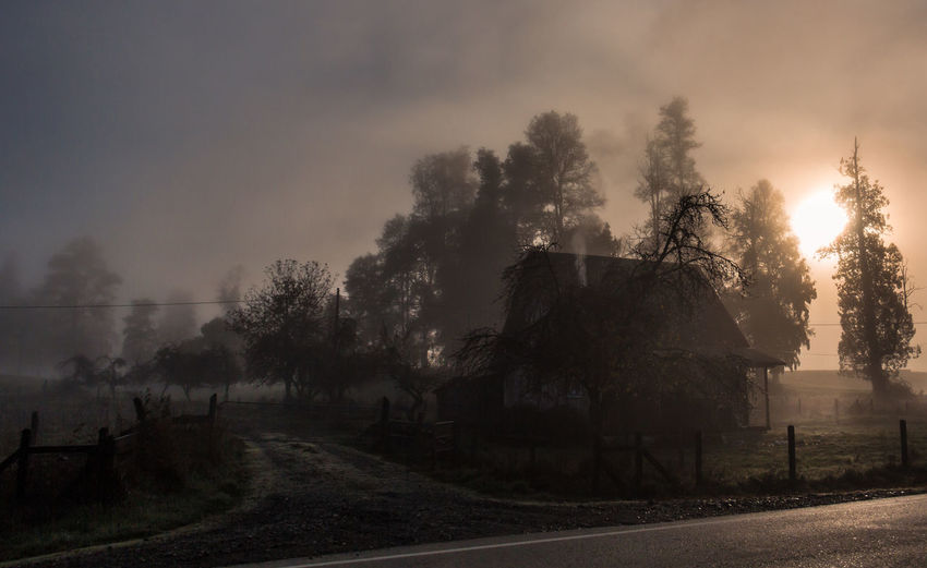 Home Beauty In Nature Cloud Countryside Dark Day Flower Fog Foggy Home Landscape Mist Nature Outdoors Outline Remote Road Rural Scene Scenics Silhouette Sky Solitude Sun Tranquil Scene Tranquility Tree