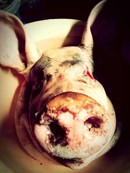 Loose your head babe Pig Pig Head Scary
