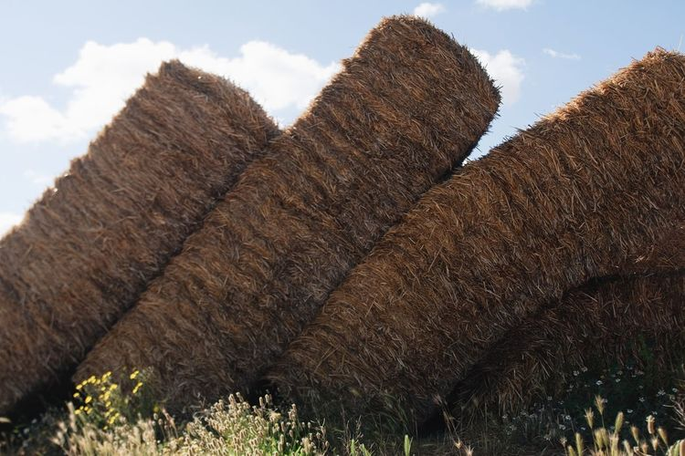 Stacks of hay bales against sky
