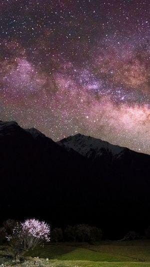 星空,雪山和桃花 Tibet China 西藏 林芝 索松村 银河 星空 Stars