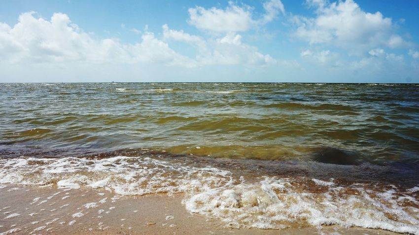 Ways Of Seeing Beach Photography Beach Life Beach Seascape Gulf Coast Gulf Of Mexico Gulf Water Wave Low Tide Sea Beach Horizon Sand Blue Summer Sea Life Seaweed Seascape Tide Rocky Coastline Coast Coastline Surf Rushing Shallow Coastal Feature Reef