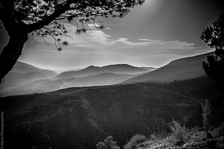 Peaceful hike Mountain No People Landscape Nature Tree Beauty In Nature Mountain Range Scenics Noir&blanc Bw_collection Blackandwhite Bw_lover BW_photography Black & White Black And White Spain_greatshots Hiking Trails Sky Outdoors Perspectives On Nature Black And White Friday