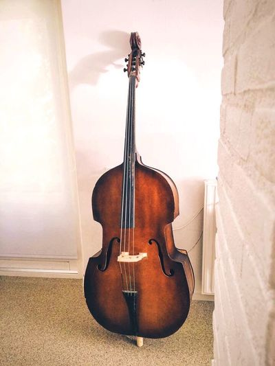 Music is the universal language of mankind Music Musical Instrument String Instrument Doublebass Upright Bass Universal Language