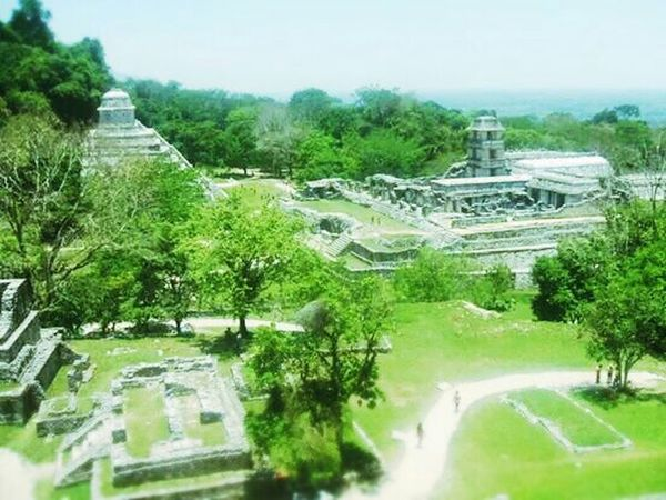 Palenque Mexico Wonderful Archeology