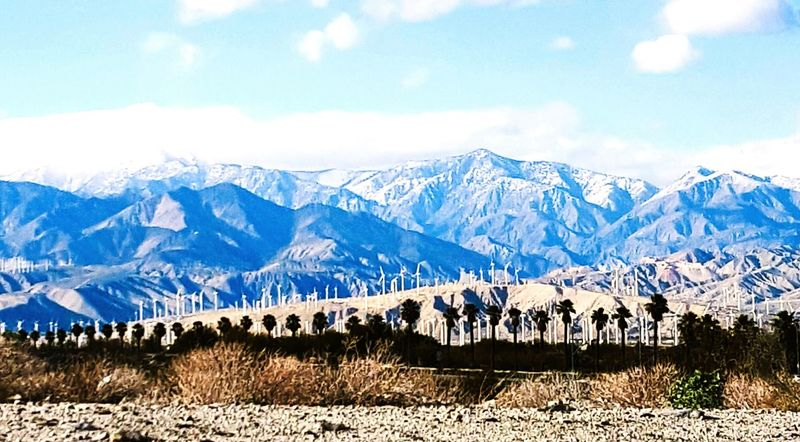 Snowy Mountain Tops Snowcapped Mountain Mountains Mountain Range Desert Floor Windmills Palm Trees Clouds And Sky Sky Sky And Clouds Clouds Coachella Valley Palm Springs Wind Farm Outdoors Nature Photography EyeEm Eyeem Market EyeEm Best Shots Landscape IShootFromMyWheelchair Wide Angle