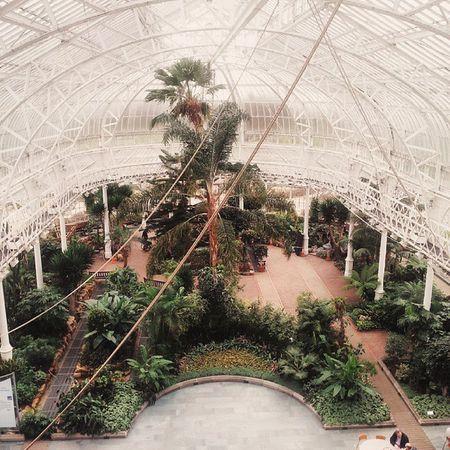 Botanic garden Glasgow  Instaglasgow Instascotland Latergram Greenpark Vscocam VSCO