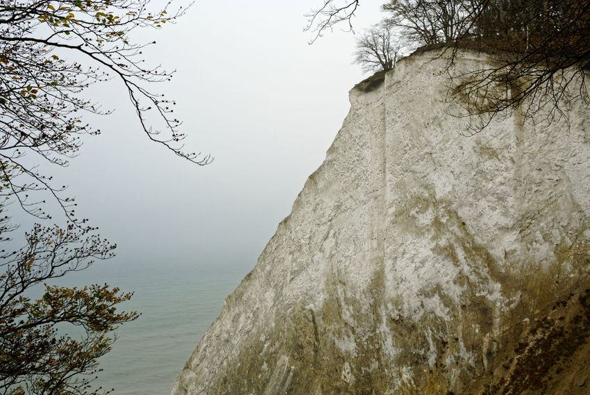 A chilly autumn day at Møns Klint, Vordingborg Kommune, Danmark on Oct 20, 2017. Photograph Balticsea Coastline Denmark Mønsklint Nature Seashore Beauty In Nature Branch Cliff Coast Europe Fog Moensklint No People Outdoors Places Scenics Sea Seascape Shore Steep Coast Tranquil Scene Tranquility Tree Water
