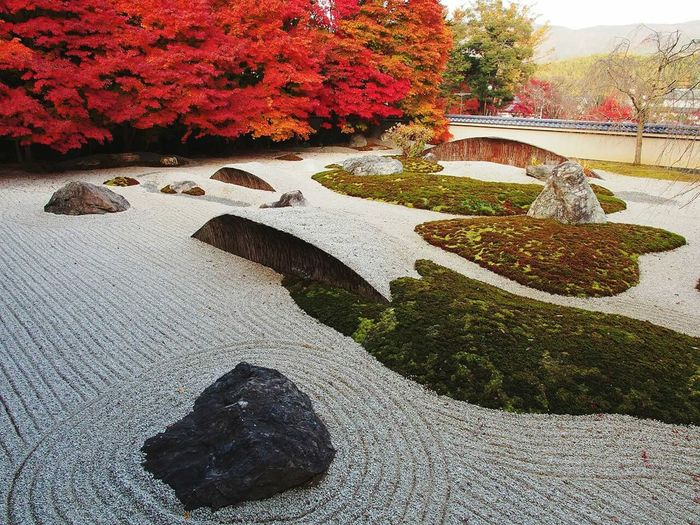Check This Out Taking Pictures Japan Hanging Out Popular Photos Hello World Eye Em Best Shots Garden Soul Searching Travel